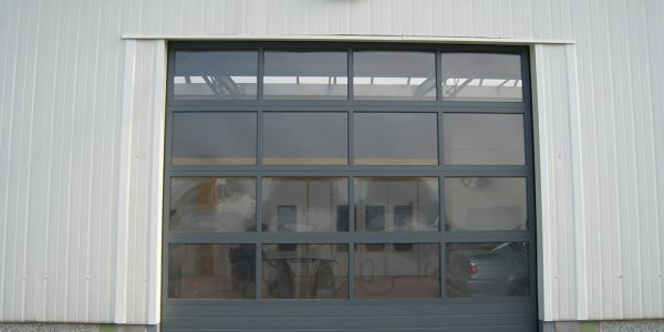 Porte sectionnelle transparente full vision - SMF Services